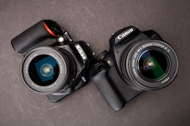 Nikon D3500 vs Canon T7