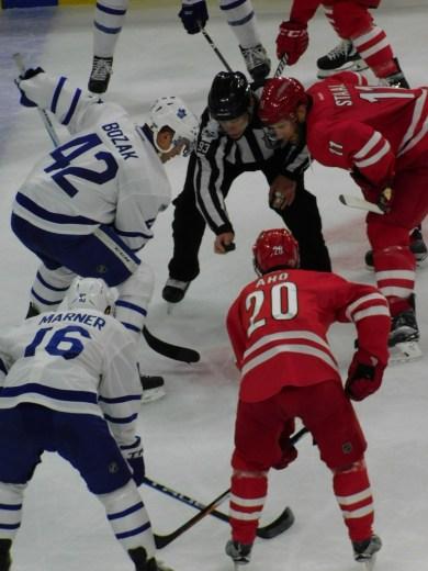 Leafs 9