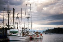 Boats in Nanaimo Harbour