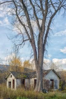 Former homestead