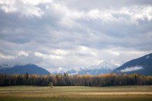 Autumn colours and the mountains just before McBride