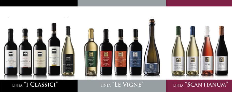 line-up-vini