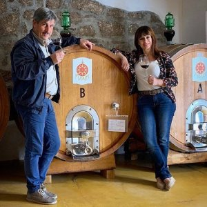 Sardinian Wines Murales | Wine tourism in Gallura