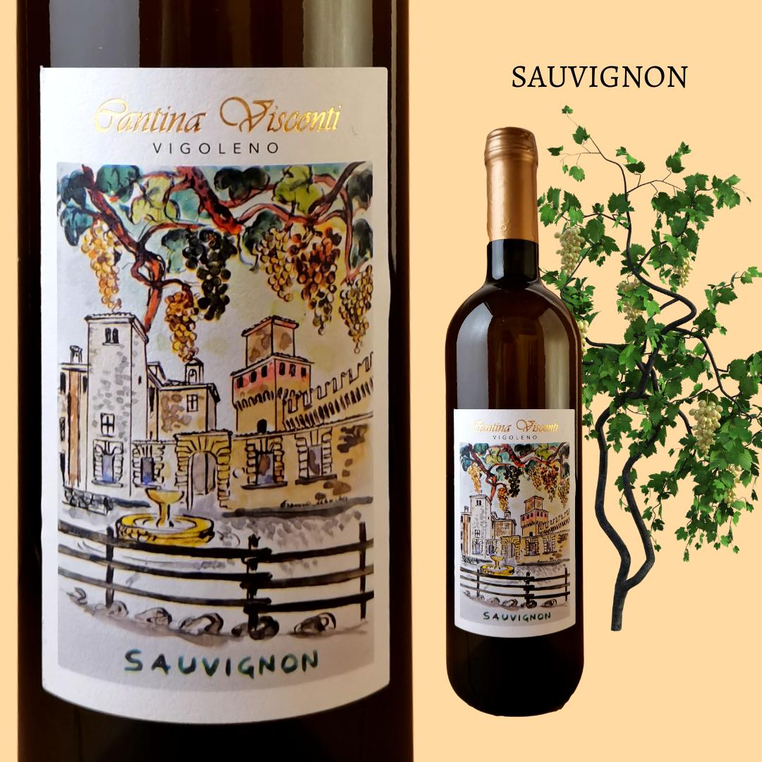 Sauvignon doc Colli Piacentini di Cantina Visconti di Vigoleno