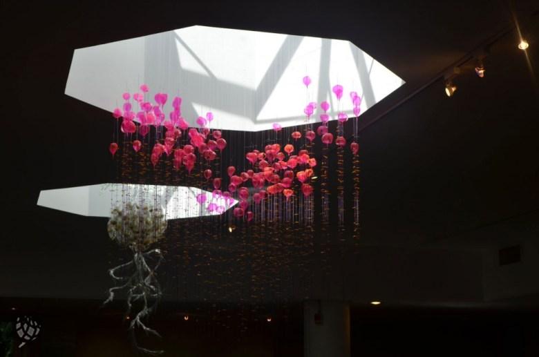 brooklyn botanic garden sombrinhas