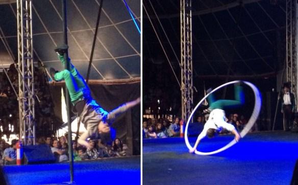 Circo artistas