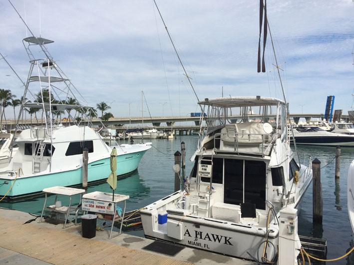 Bayside-Marketplace-barcos