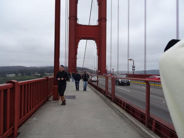 15-atracoes-imperdiveis-em-San-Francisco-GG1