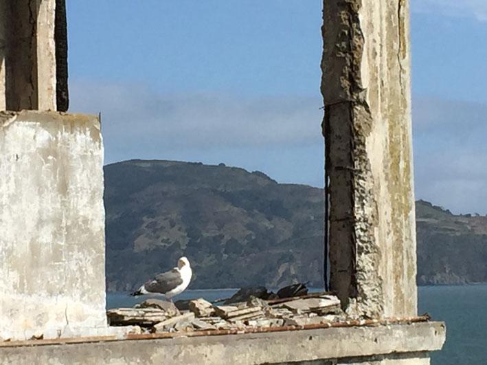 Alcatraz-ruinas