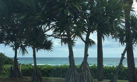 Fort Lauderdale: bate-volta para cidades vizinhas