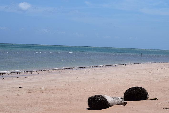 Mar de Patacho em Alagoas