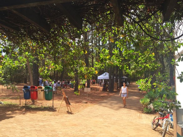 cafe-no-jardim-botanico-de-brasilia-1