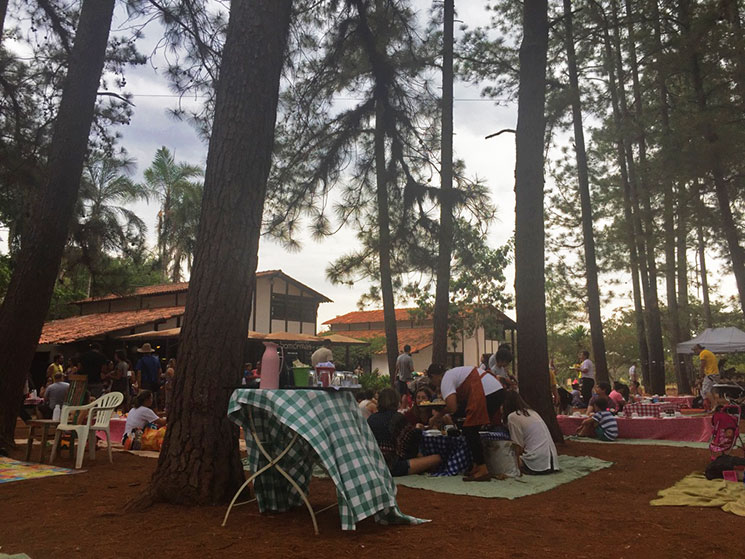 cafe-no-jardim-botanico-de-brasilia-11