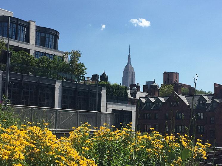 high-line-park-em-new-york-8