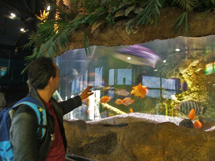 aquario-de-barcelona-6