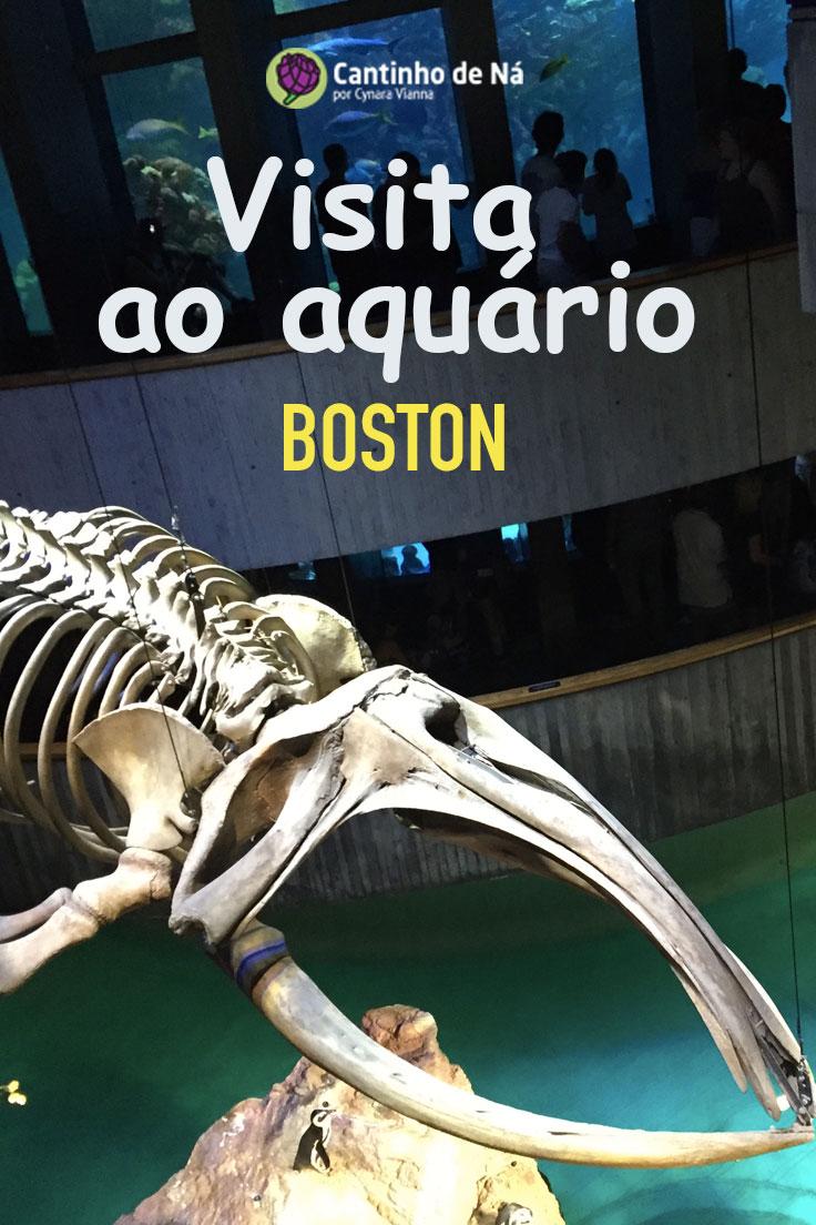 Visita ao aquário em Boston