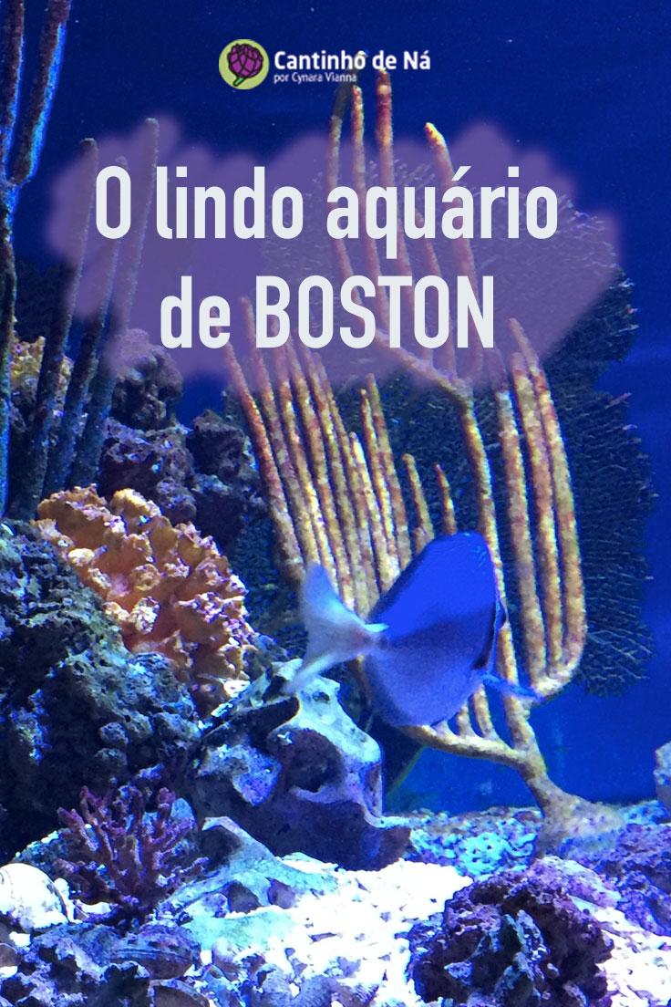 Como é a visita ao aquário em Boston