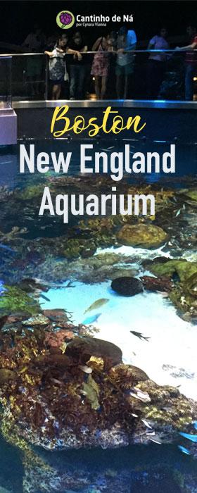 Como é aquário em Boston