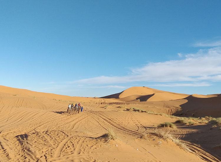 Passeio de dromedário pelo deserto do Marrocos