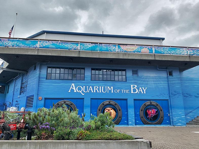 Visita ao Aquarium of the Bay em San Francisco