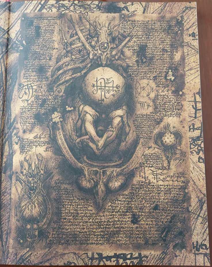 Página antiga cheia de inscrições em uma língua estranha e um desenho de um feto ao centro, dentro de uma caixa toráxica.