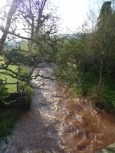 A River Swells Through It