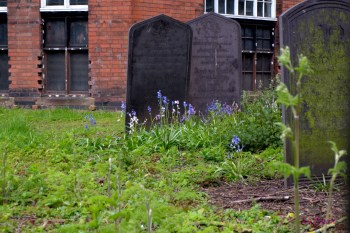 Still in St George's churchyard. I didn't want to leave.