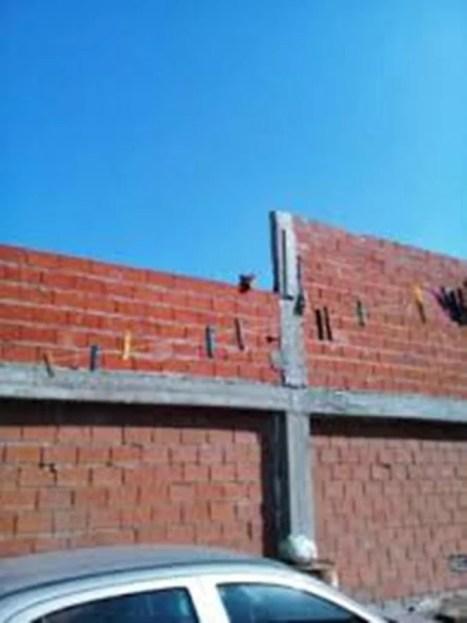 Máximo Paz, partido de Cañuelas Pitbull de genética asesina se lanza de la terraza de su casa, para atacar a sus vecinos gg