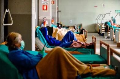 Argentina Coronavirus COVID-19: suman 363 los muertos y 7.805 los casos confirmados