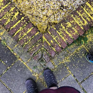 BriocheSidewalk