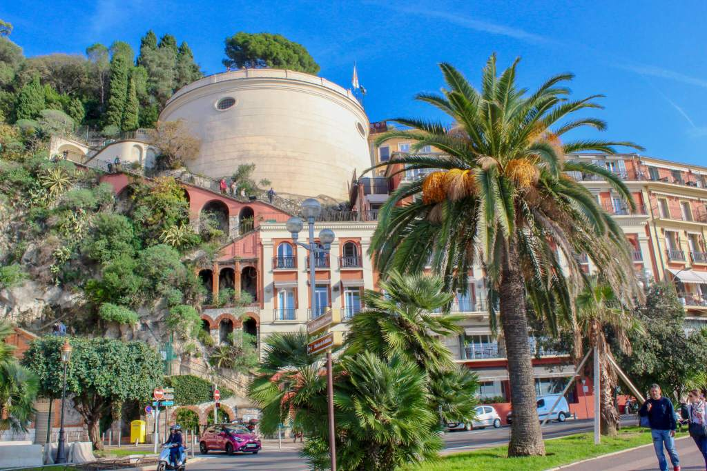 Palm Trees in Nice, France