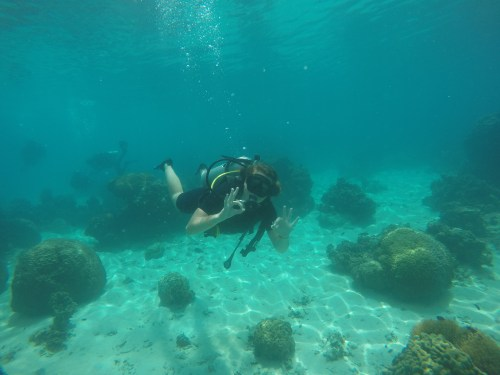 J+263 Découvrir la plongée à Mango Bay !