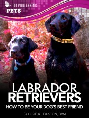 Labrador Retrievers: How to Be Your Dog's Best Friend on Capability Mom