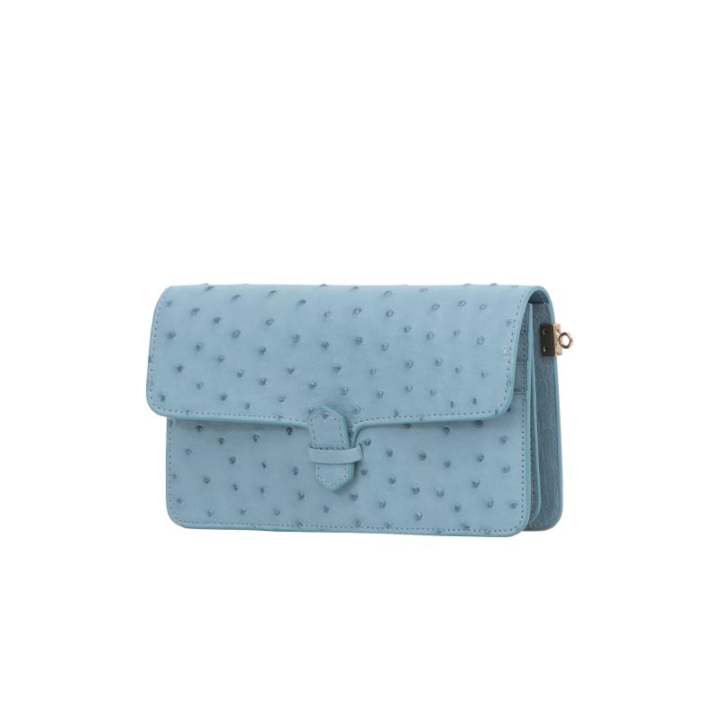 Accordion Crossbody Wallet in Sapphire Ostrich 2