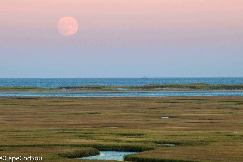 Harvest Moon 2017 Cape Cod