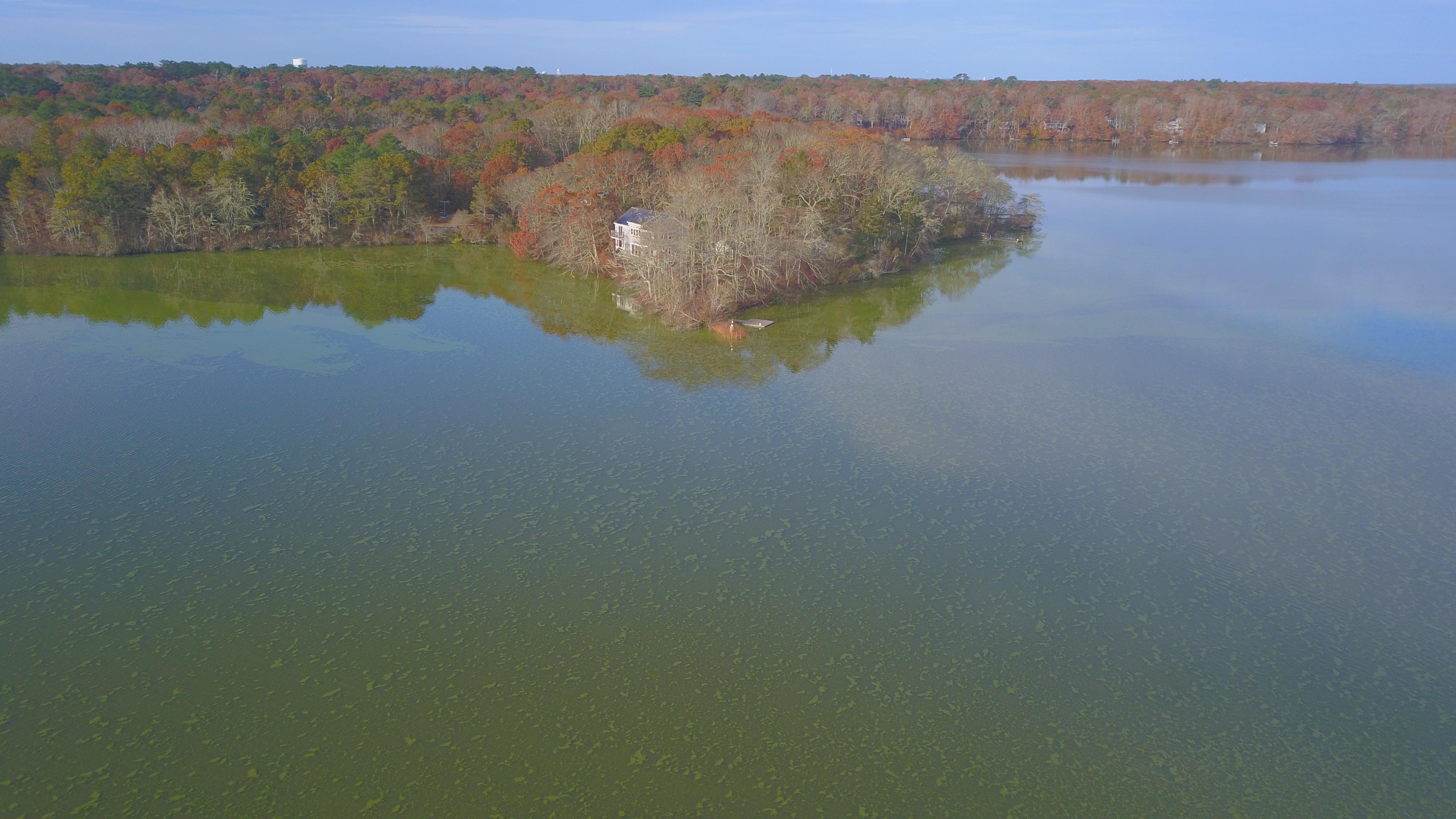 Santuit Pond