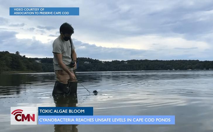 Cape Media News: Cyanobacteria Update with APCC