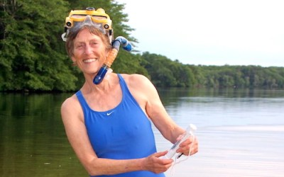 APCC Pond Stories: Swimming With Turtles Video