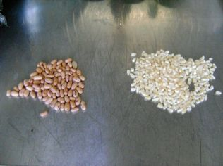 Samp is simply dried corn kernels - it is traditionally cooked on its own or with sugar beans