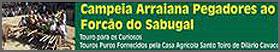 «Campeia Arraiana» - pormenor do Cartaz das Festas da Moita
