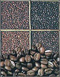 Café é uma das muitas riquezas daquela zona