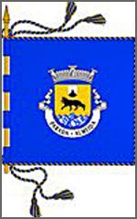 Bandeira da freguesia de Parada
