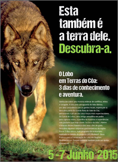 À descoberta do habitat do lobo