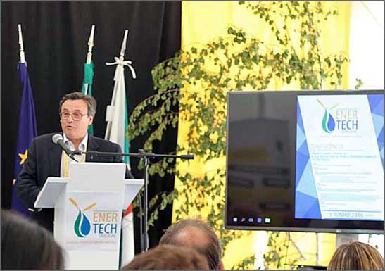 A biomassa florestal pode ser negócio rentável no Sabugal