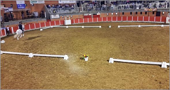 I Feira do Cavalo  e do Touro no Soito - Capeia Arraiana
