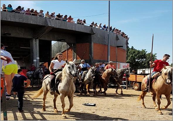 Encerro a Cavalo - Capeia Arraiana