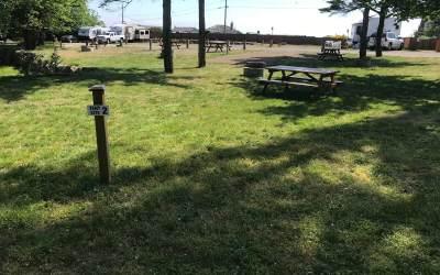 Tent Site 2