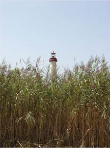 phagmiteslighthouse