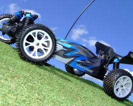 FTX VANTAGE 1:10 BUGGY 4WD EP RTR