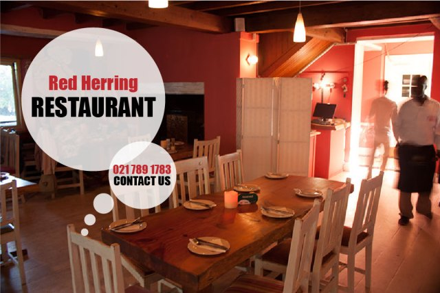 the red herring noordhoek cape town vegan